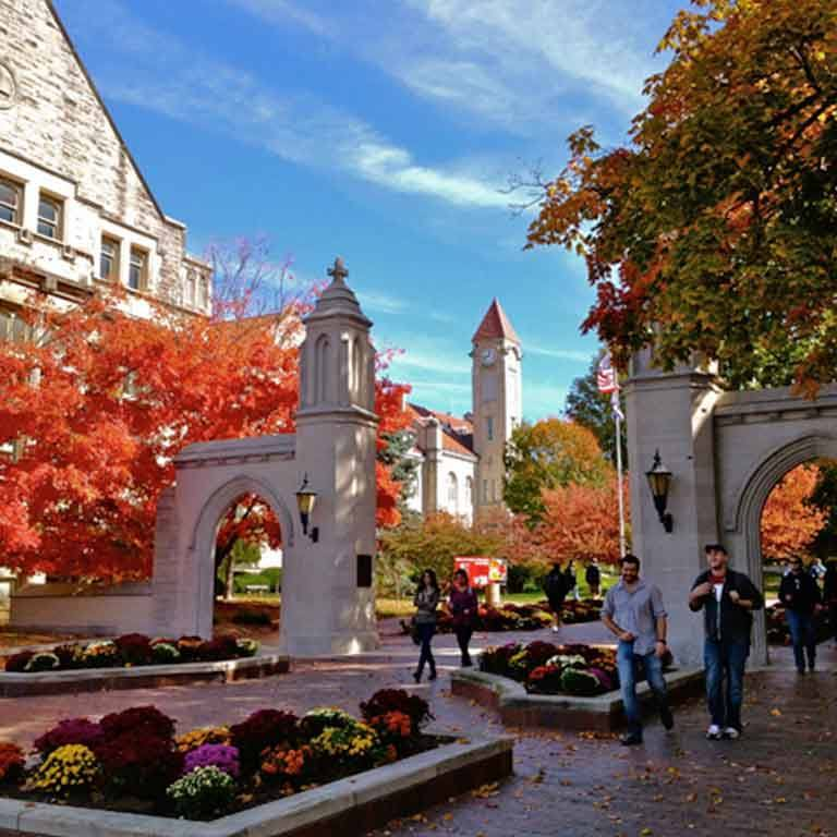 IU's Sample Gates