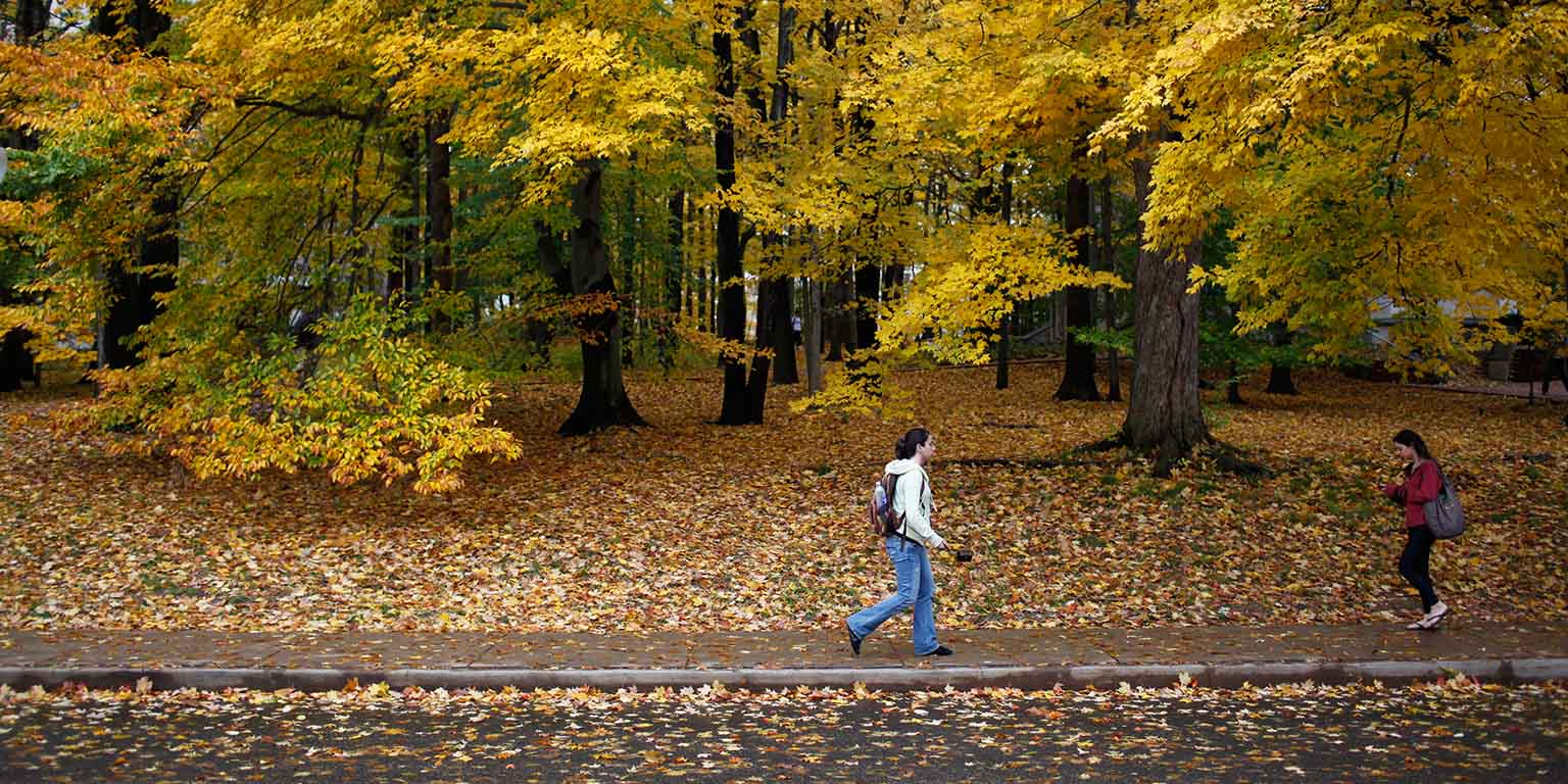Students walk in front of autumnal trees